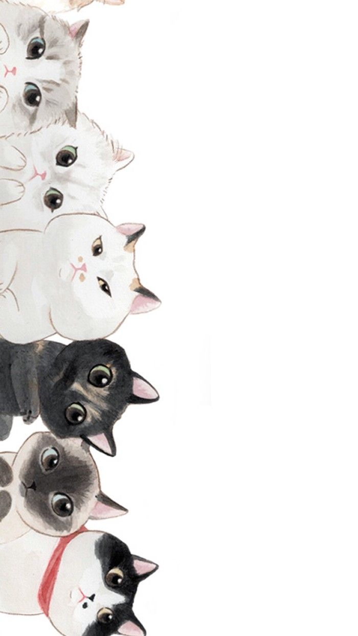 4000 Wallpaper Hp Kucing Lucu  Gratis