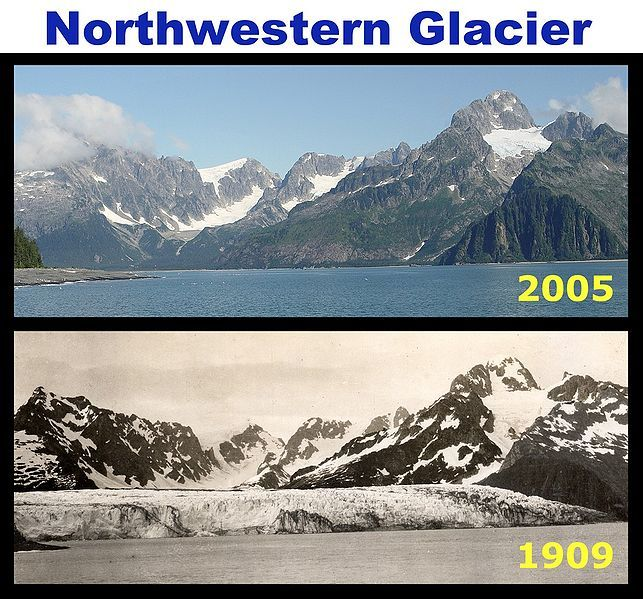 Nature Nate S Comparison