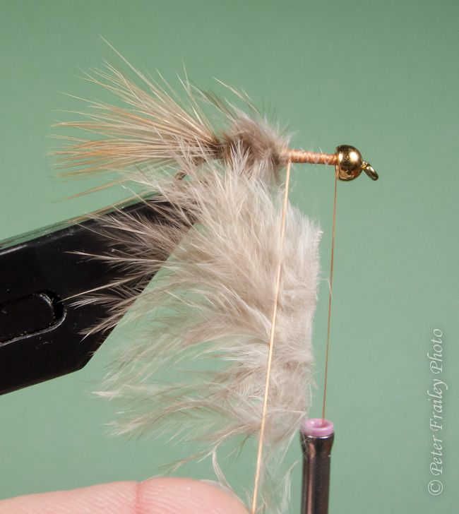 Fishing with flies blog step by steps for the one for Fly fishing feathers