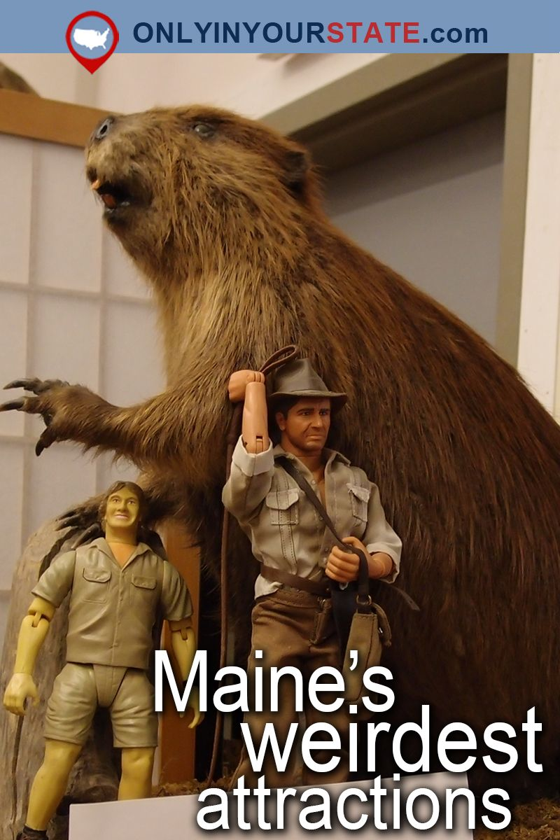 Here Are The  Weirdest Places In Maine You Can Possibly Go - Small museums in usa
