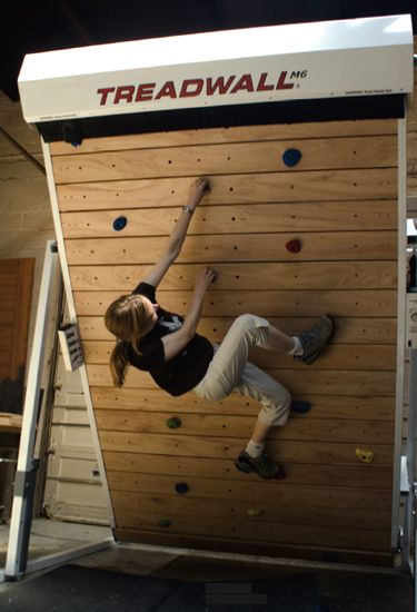 Treadwall workout.  Also: http://www.indoorclimbing.com/trainingplans.html I want one