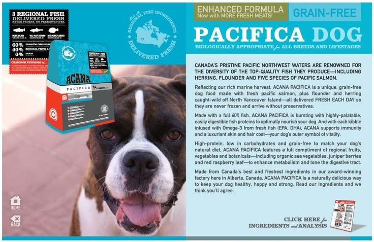 Acana Pacific Dog Food Matches The Natural Diet Of Your Dog As