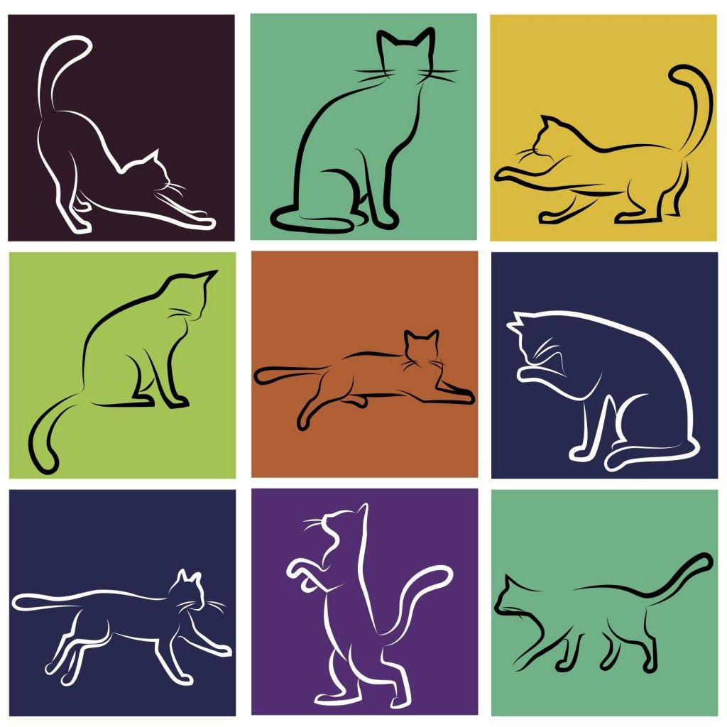 TS Eliot's Old Possum's Book of Practical Cats. Study guide $3.99 by  Sabrina Justison for 7SistersHomeschool . com