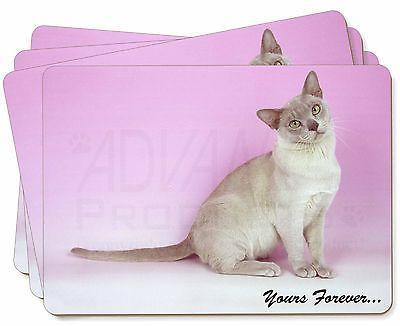 #Burmese cat 'yours forever' #picture placemats in gift box, #ac-32yp,  View more on the LINK: http://www.zeppy.io/product/gb/2/361631912675/