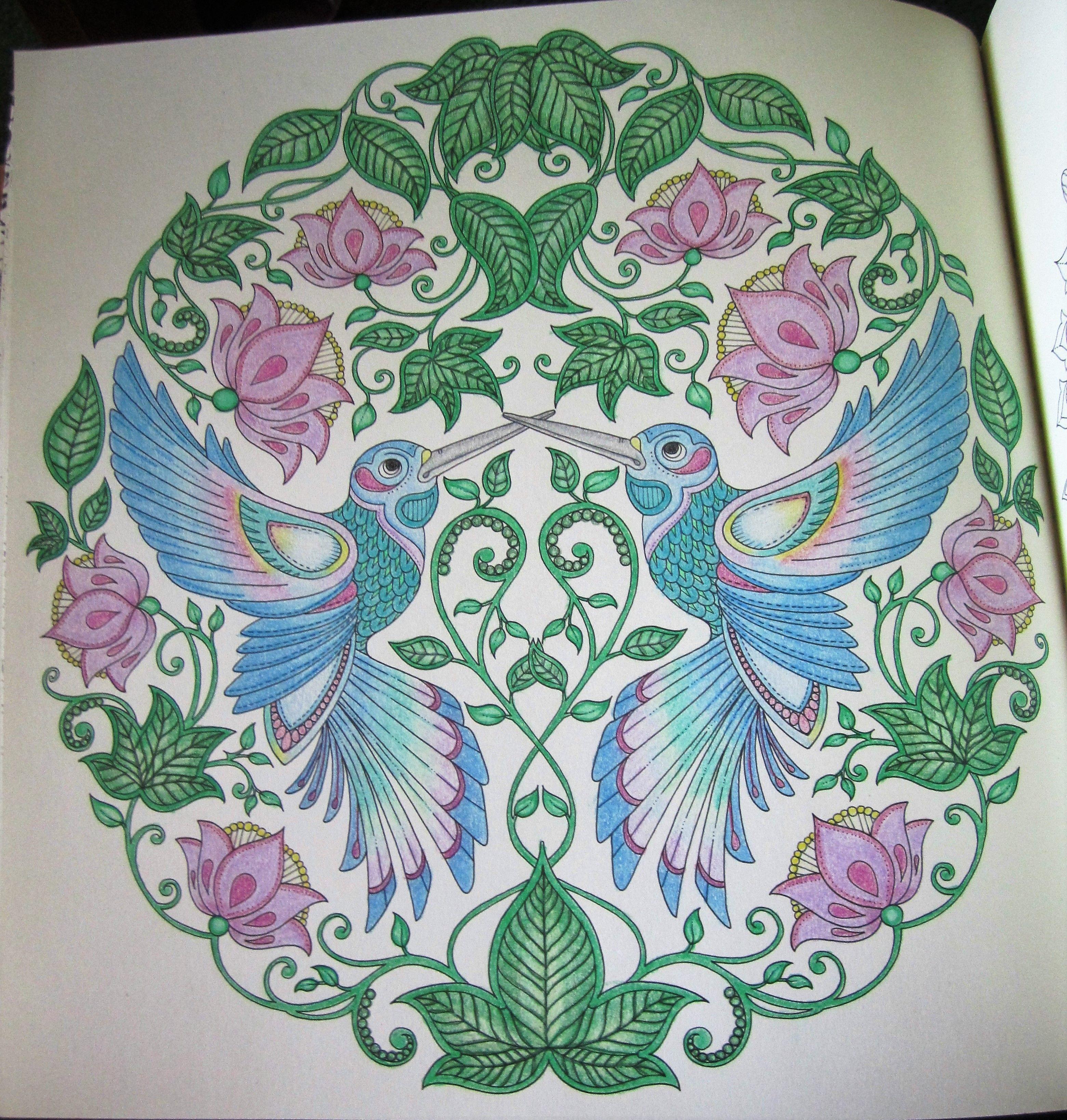 Hummingbirds From Secret Garden Johanna Basford Coloring Secret Garden Coloring Book Basford Coloring