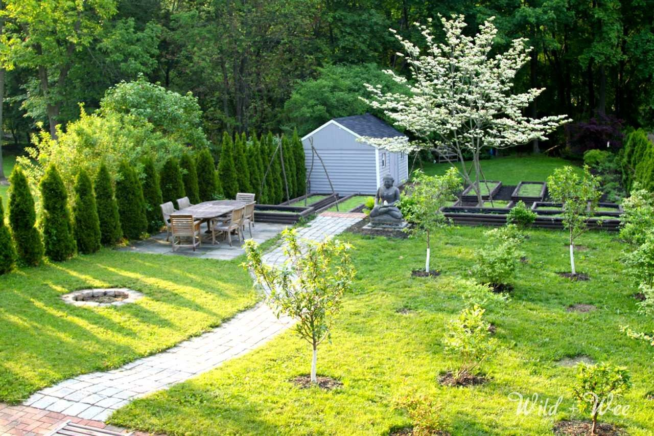 Small orchard 8ish trees, front yard.   Small backyard ...