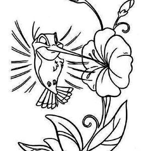 Online Printable Cartoon Hummingbird Coloring Page For Kids
