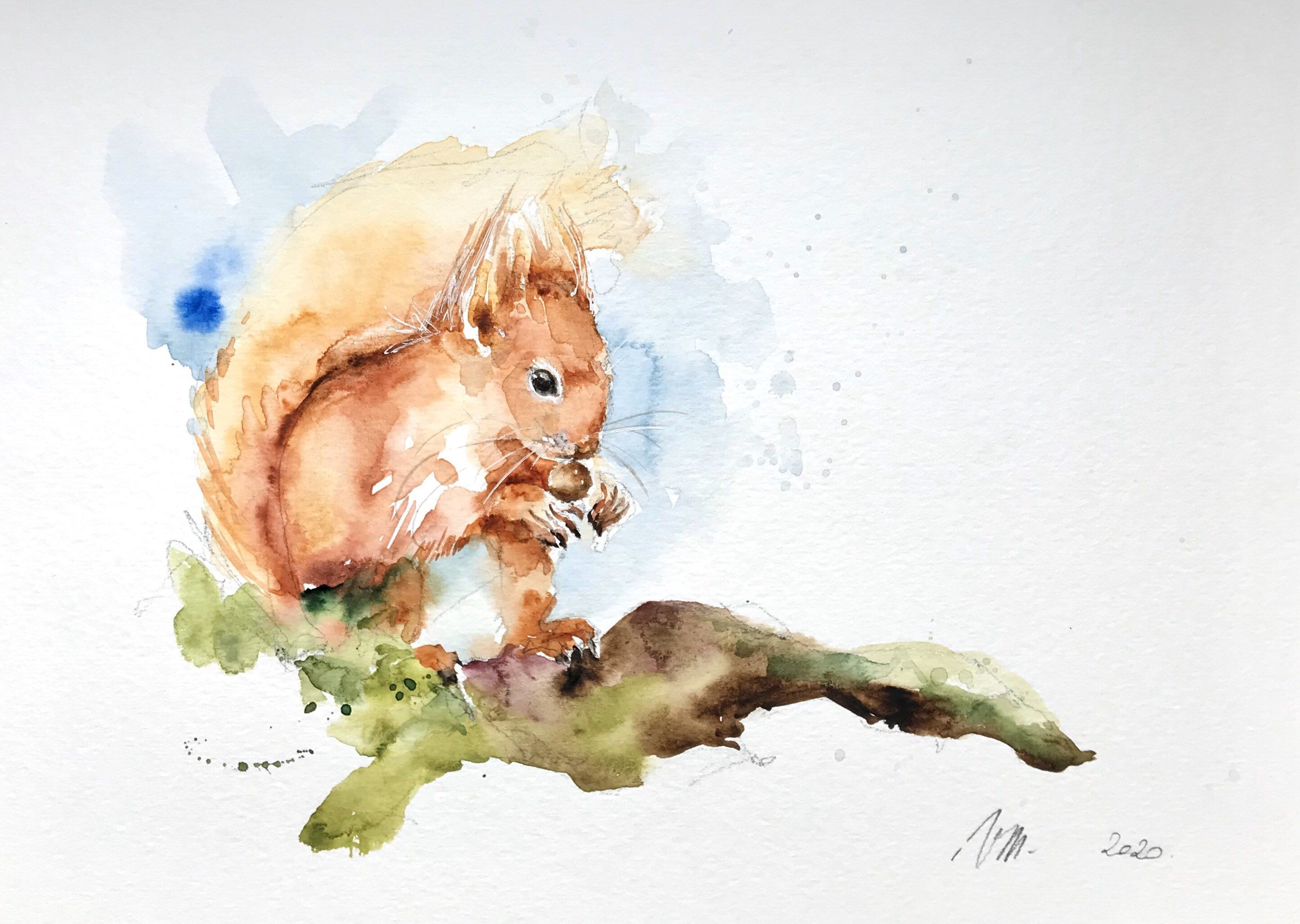 Aquarelle Peinture Originale L Ecureuil Roux Foret Paysage