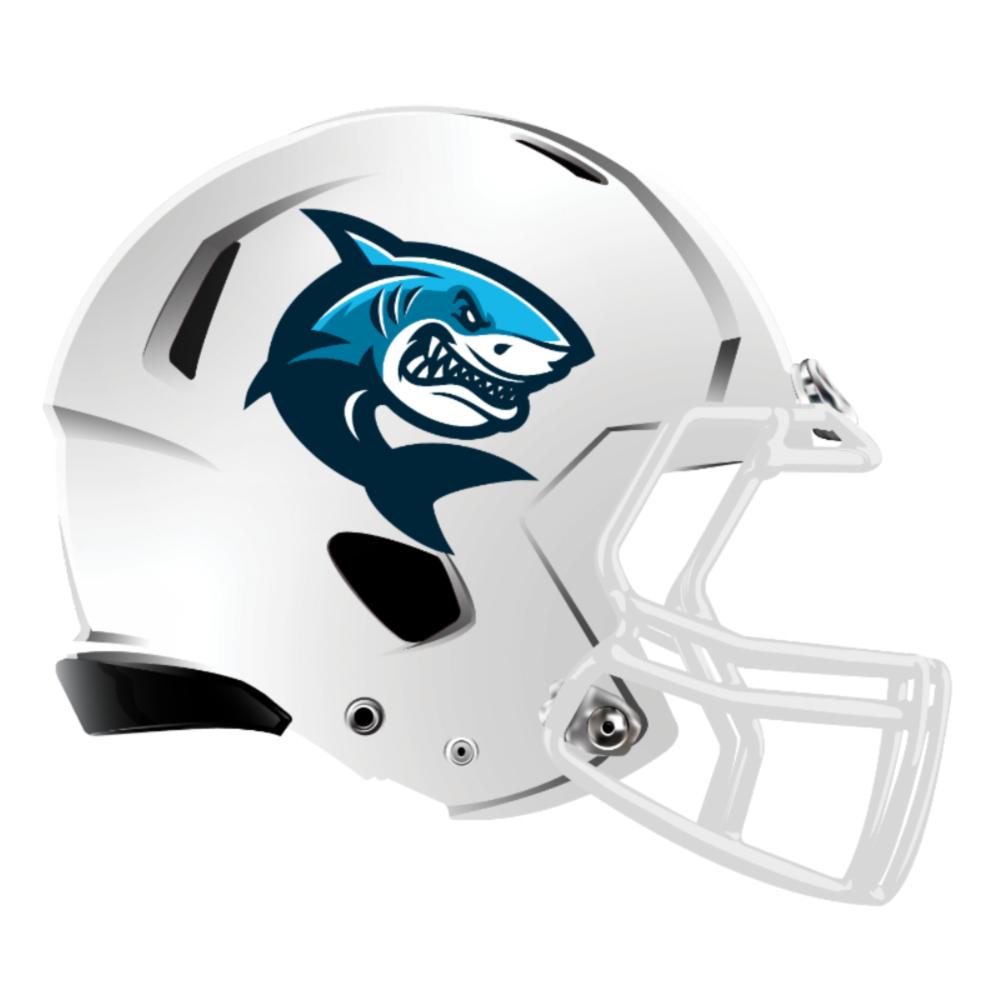 Pin By Troy Norris On Alliance Football Helmets Helmet Football