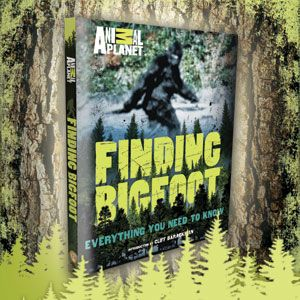 Comments on Bigfoot Evidence: Animal Planet's Squatch ...