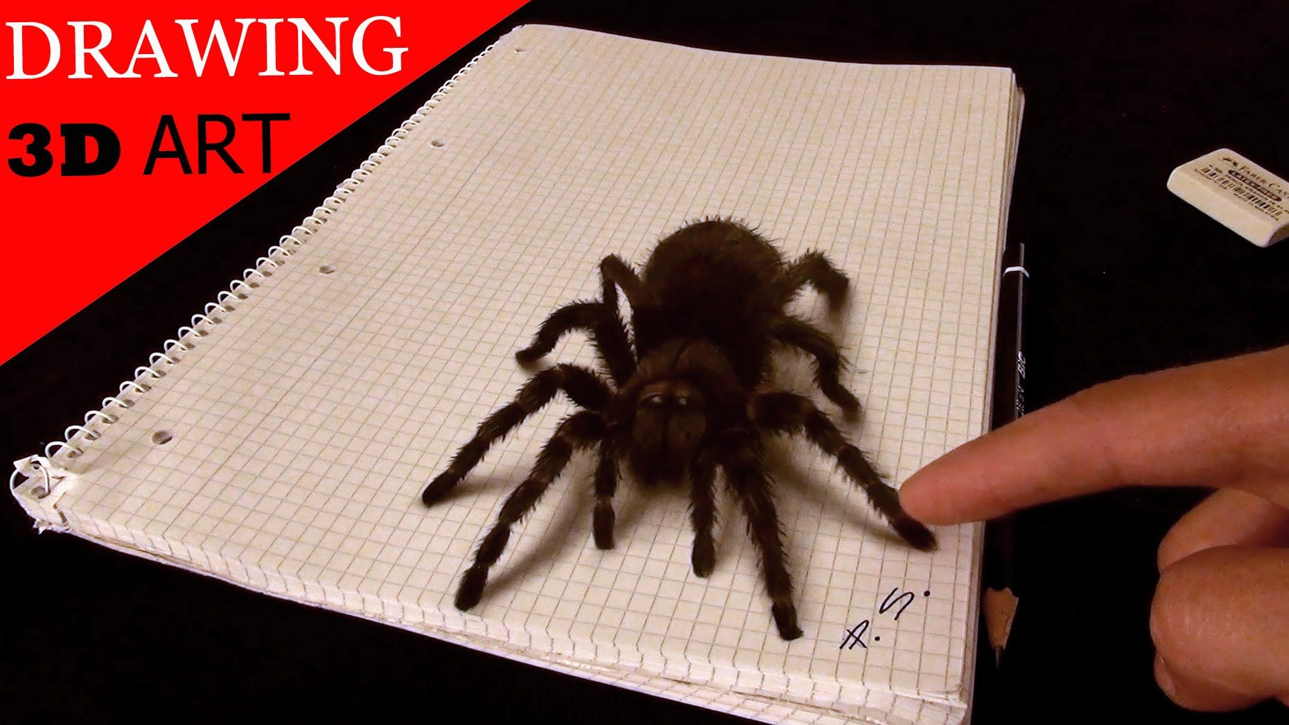 3D Spider Drawing/AMAZING realistic illusion! | 3D DRAWINGS ...