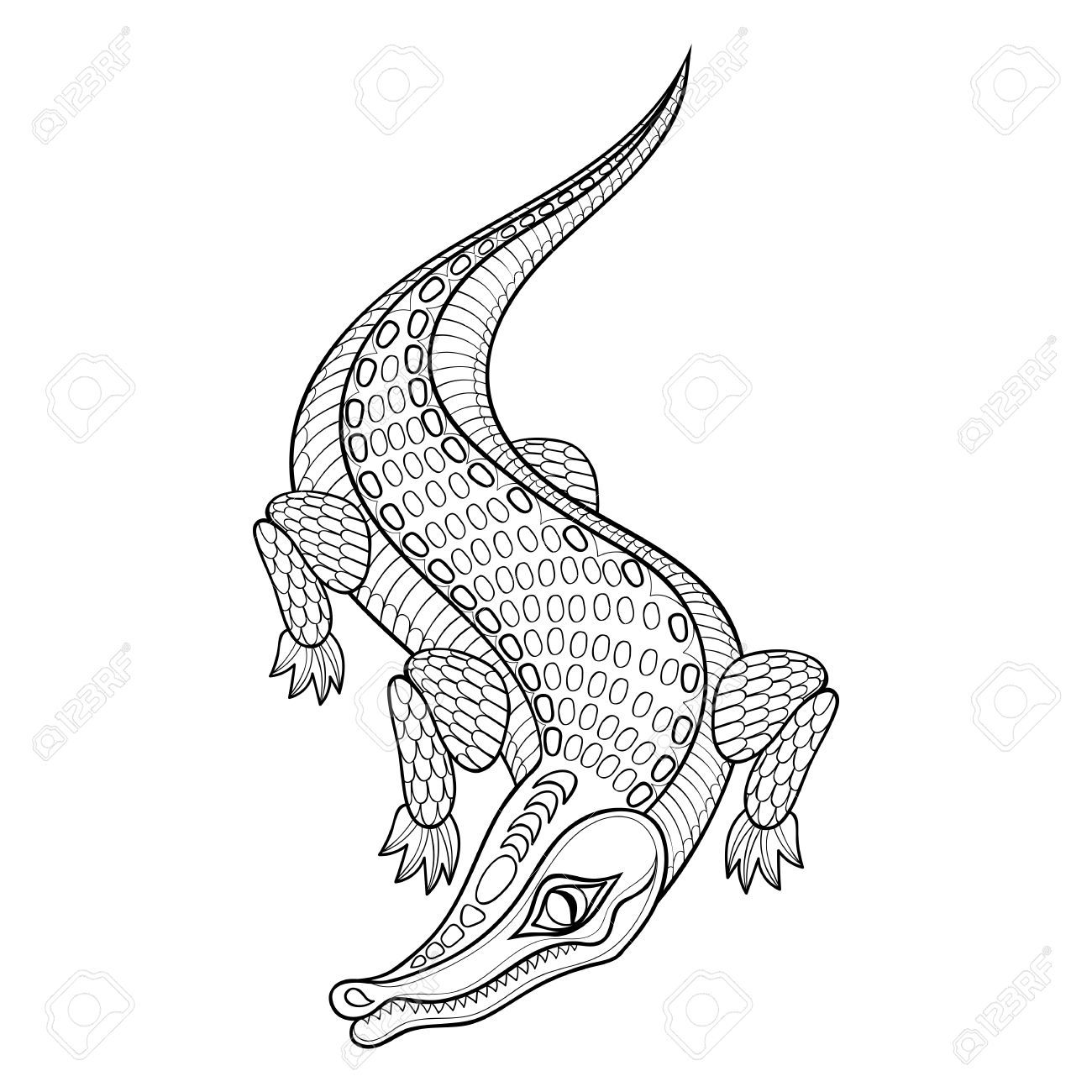 Hand Drawn Zentangled Crocodile For Adult Coloring Pages In Doodle Adult Coloring Pages How To Draw Hands Adult Coloring
