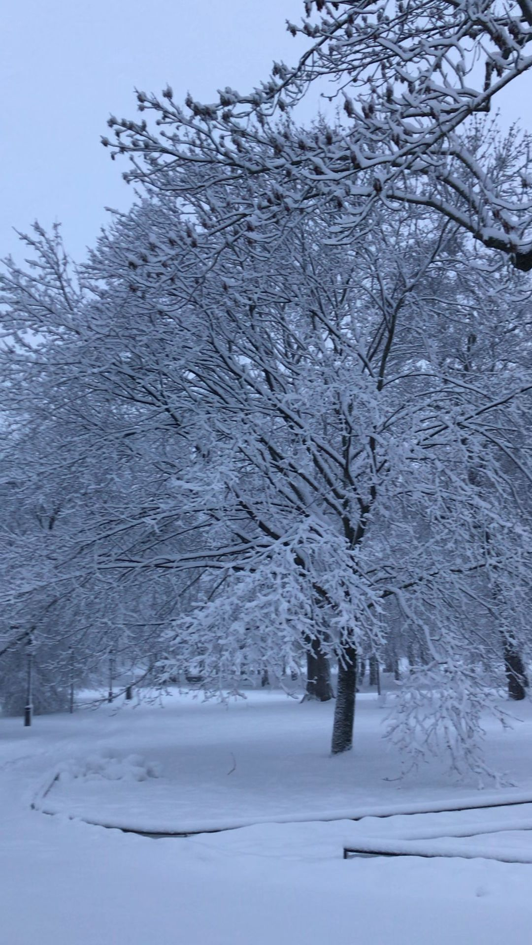 Things to do in Stockholm in Winter - Our So Called Life