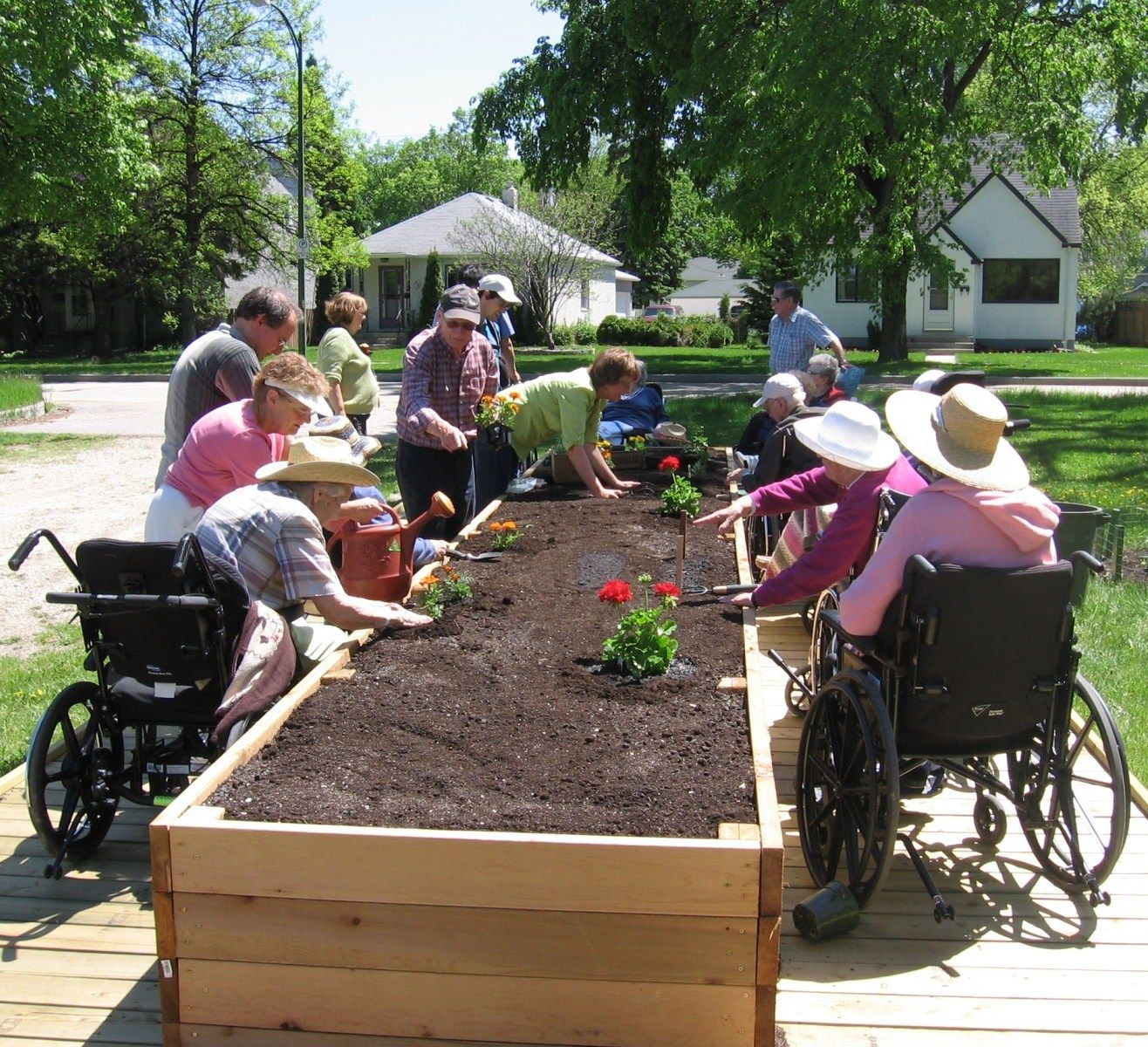 raised bed gardening for wheelchair accessibility