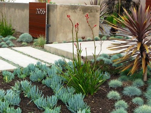 low wall with cedar siding and house numbers, concrete walkway - debora  carl landscape design