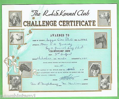 #T41. #7. 1957/59  RAS KENNEL CLUB DOG CHALLENGE CERTIFICATE, CHIHUAHUA