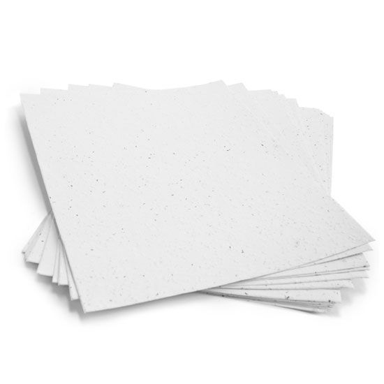 8 1 2 X 11 White Plantable Seed Paper Wildflower Seed Paper Plantable Seed Paper Seed Paper