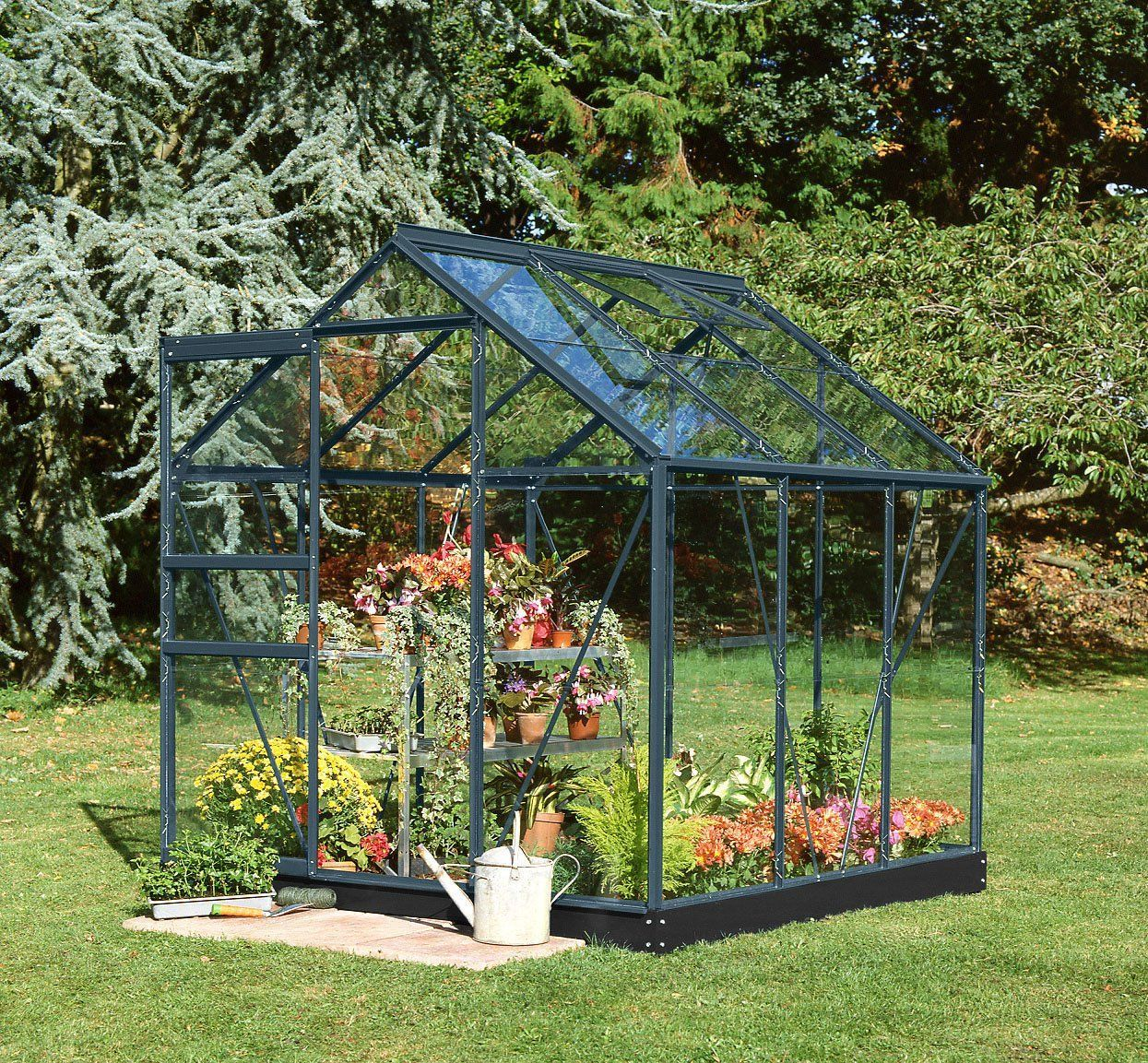 6x6 Anthracite Grey Halls Popular Greenhouse Horticultural Traditional Greenhouses Greenhouse Greenhouses For Sale Backyard greenhouse for sale