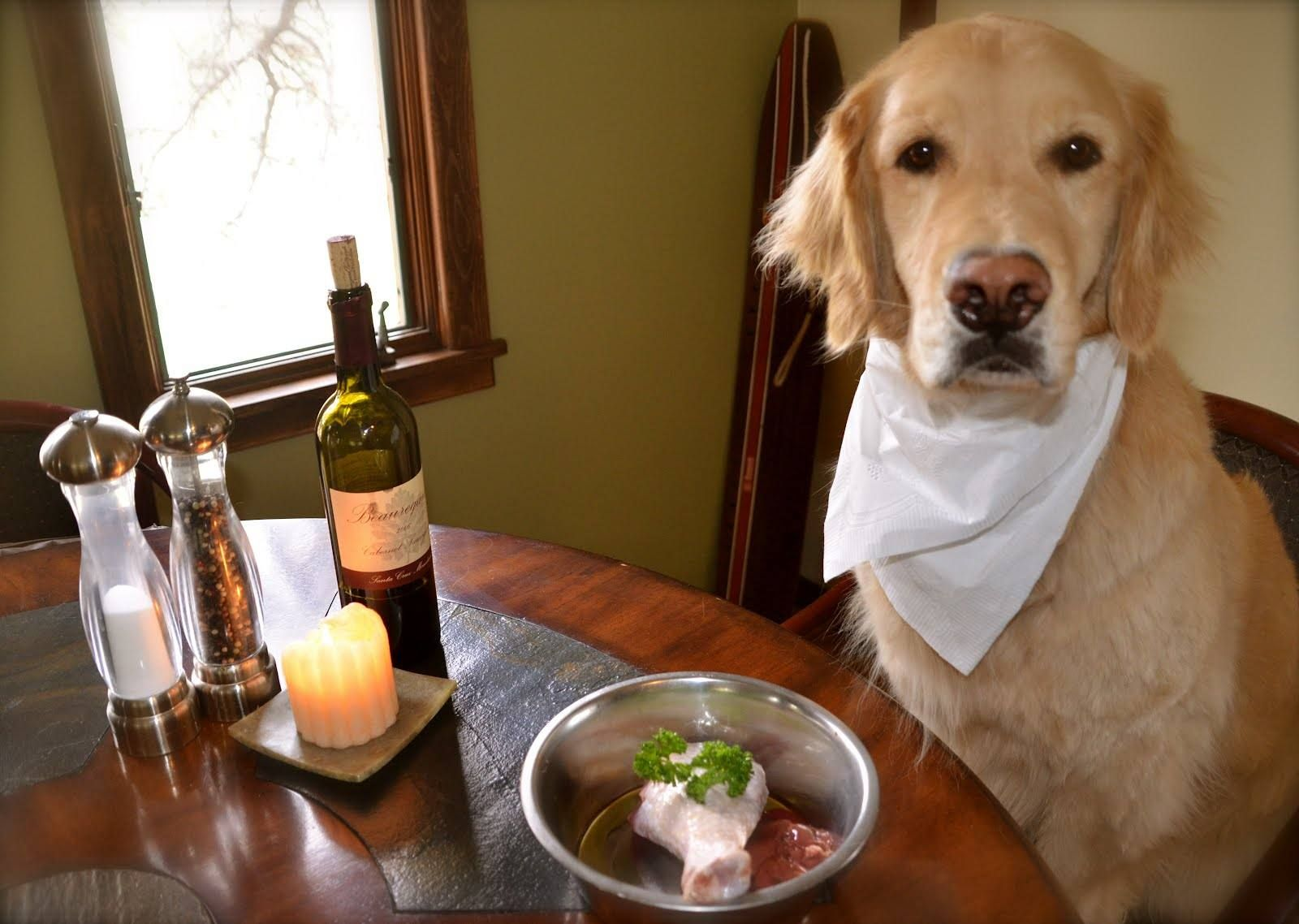 What Happens To A Dog Who Eats Table Scraps F Your Dog S Regular Meal Is A Nutritionally