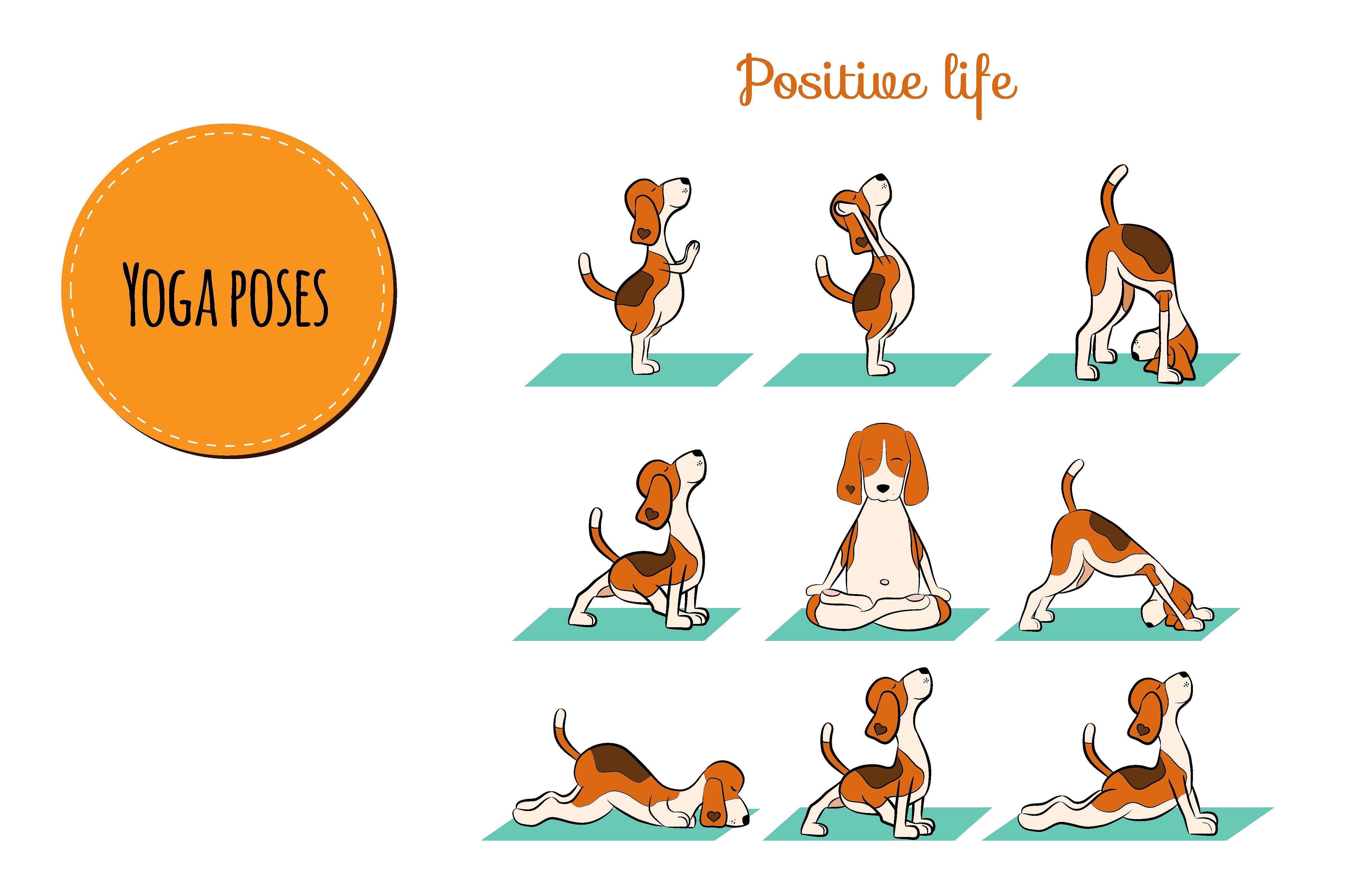 Yoga Dog Collection Dog Yoga Yoga Yoga Illustration