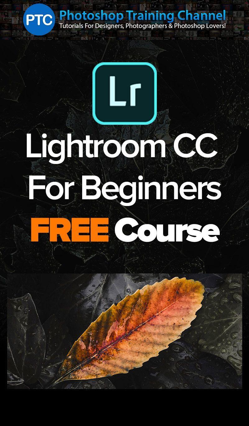 Lightroom import hangs