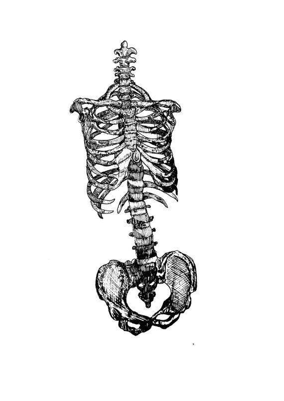 Skeleton Bones Illustration Print // Creepy by StaggIllustration