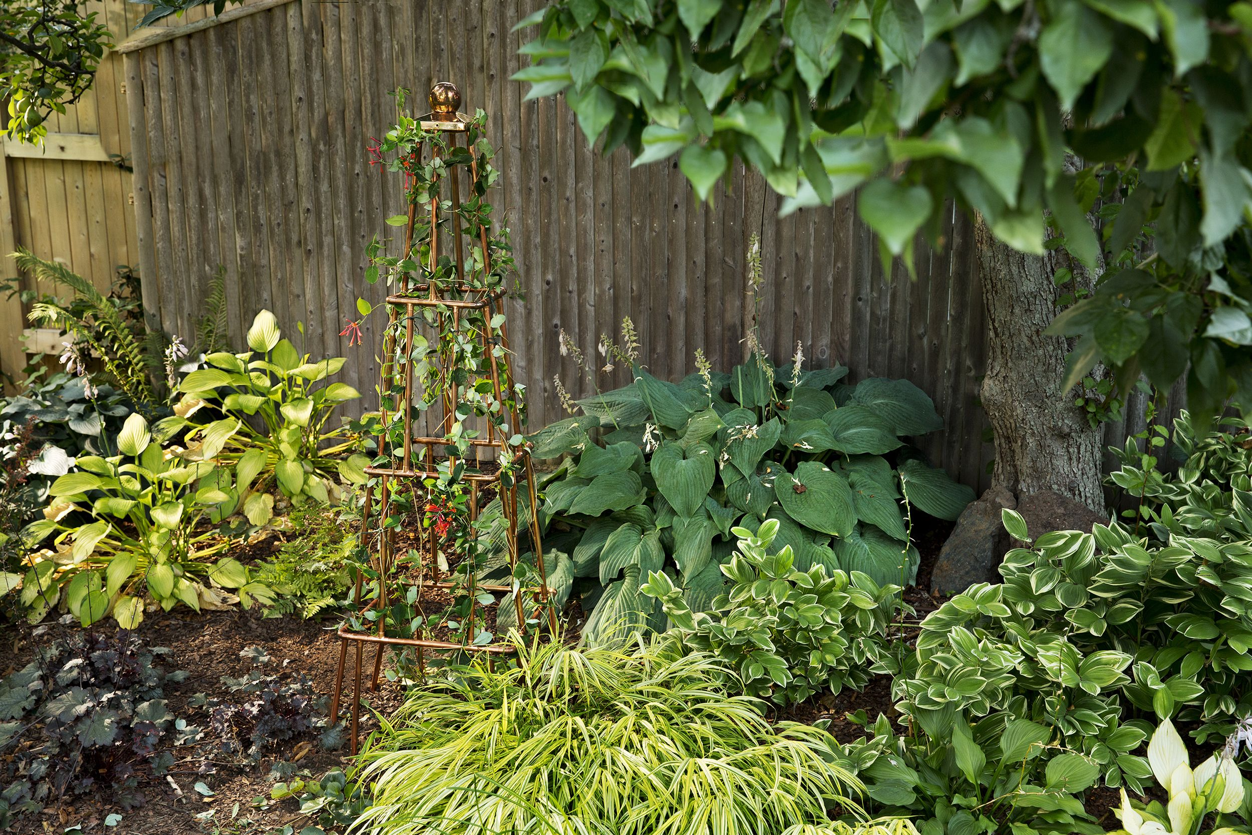 How to Build a Copper Trellis is part of garden Decoration How To Build - Transform plumbing tubing and fittings into an elegant garden accent