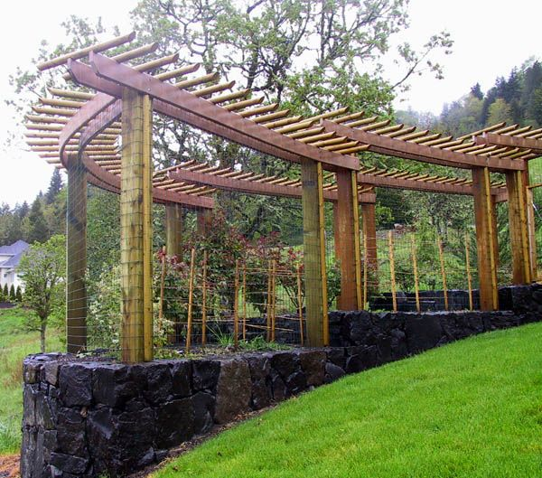 Trellis With Stone Base On Hillside | Landscape Design | Pinterest