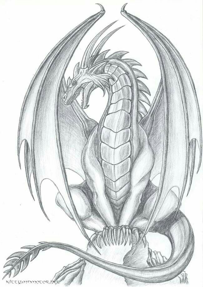 Pin by Connie on Tatoos | Dragon sketch, Dragon, Drawings