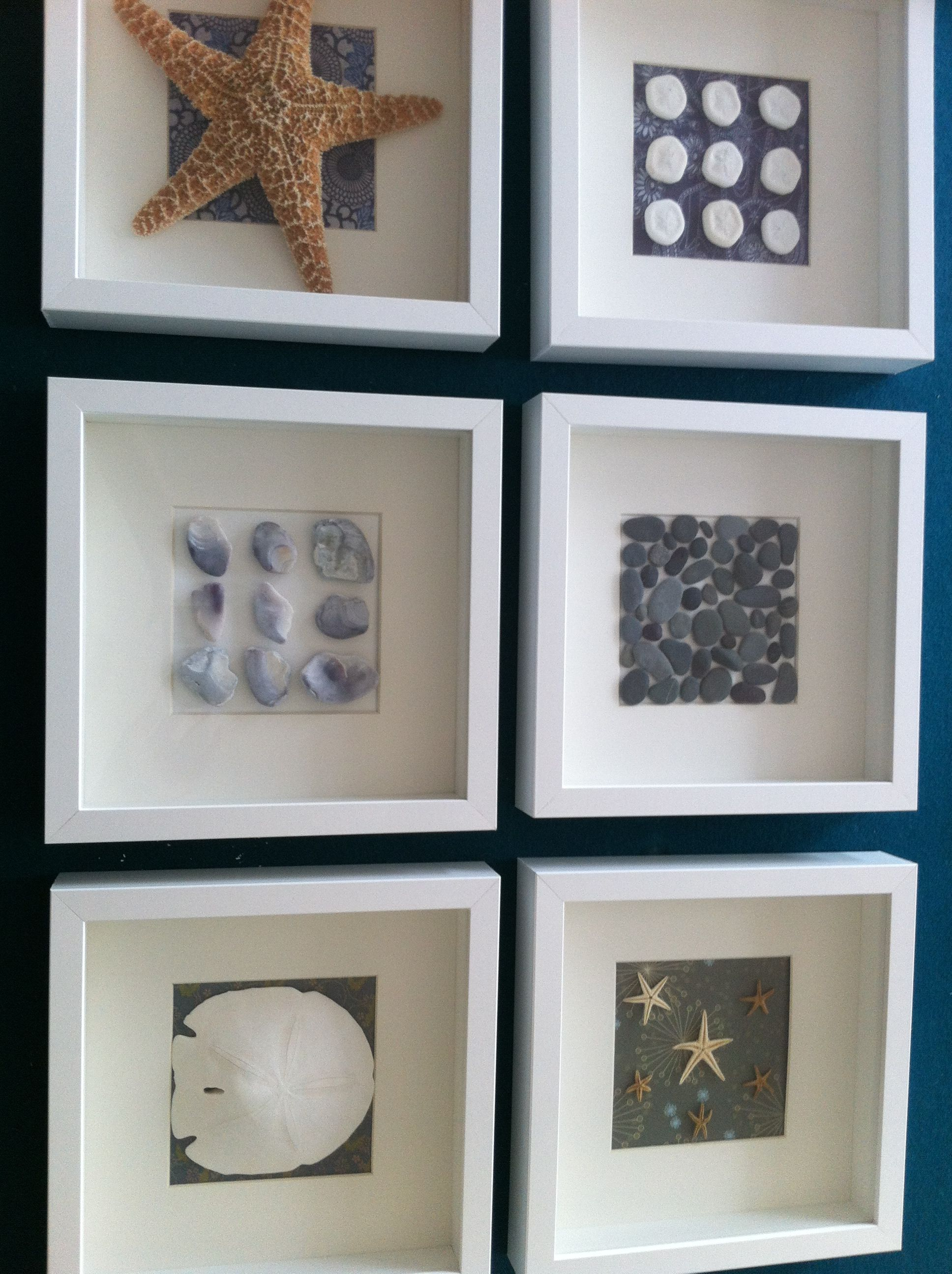 found shells pebbles and sand dollars in ikea ribba shadow box frames - Shadow Box Frames