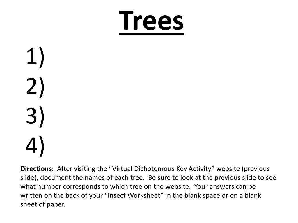 Leaf Dichotomous Key Worksheet Ppt Dichotomous Keys