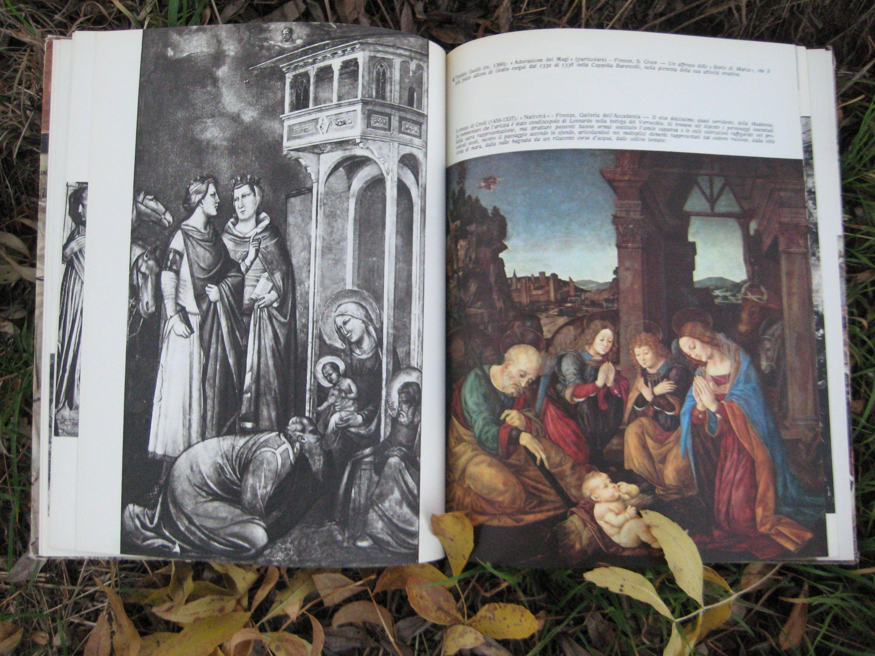 Navidad. Pesebre en el bosque. #vintagebooks #oldbooks #librosantiguos #libros #navidad
