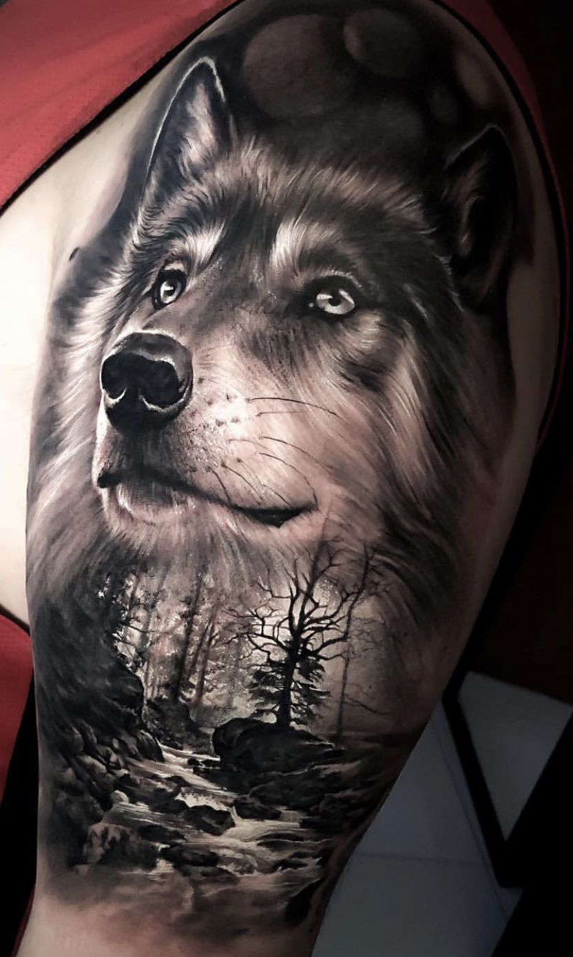 Pin By Ismael Ibanez On Tattoo Ideas Wolf Tattoo Forearm Wolf Tattoos Men Wolf Tattoo Sleeve