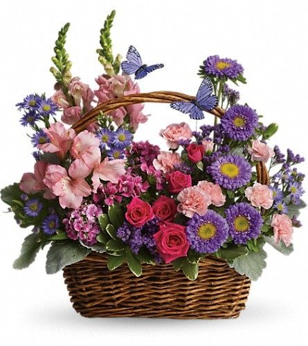Country basket blooms in 2018 flowers pinterest flowers bloom send country basket blooms in fort myers fl from the masters touch florist the best florist in fort myers all flowers are hand delivered and same day mightylinksfo