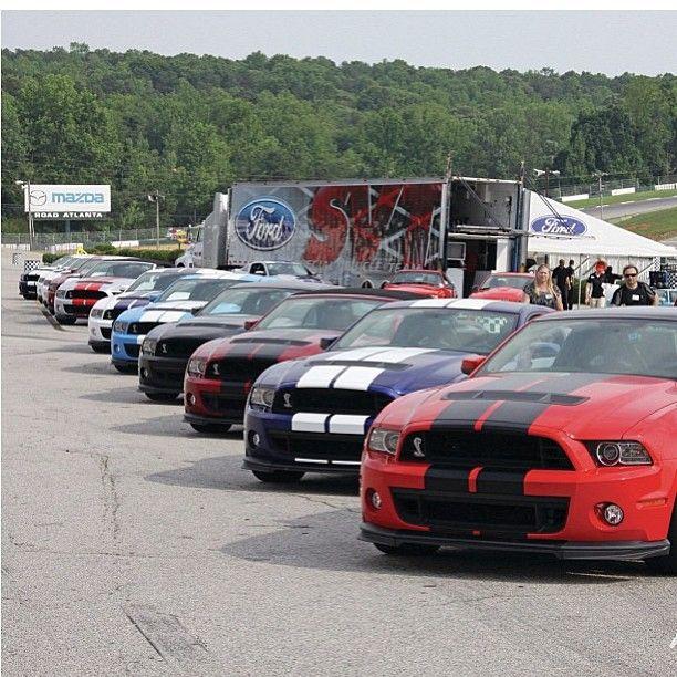 Desfile de Mustangs.