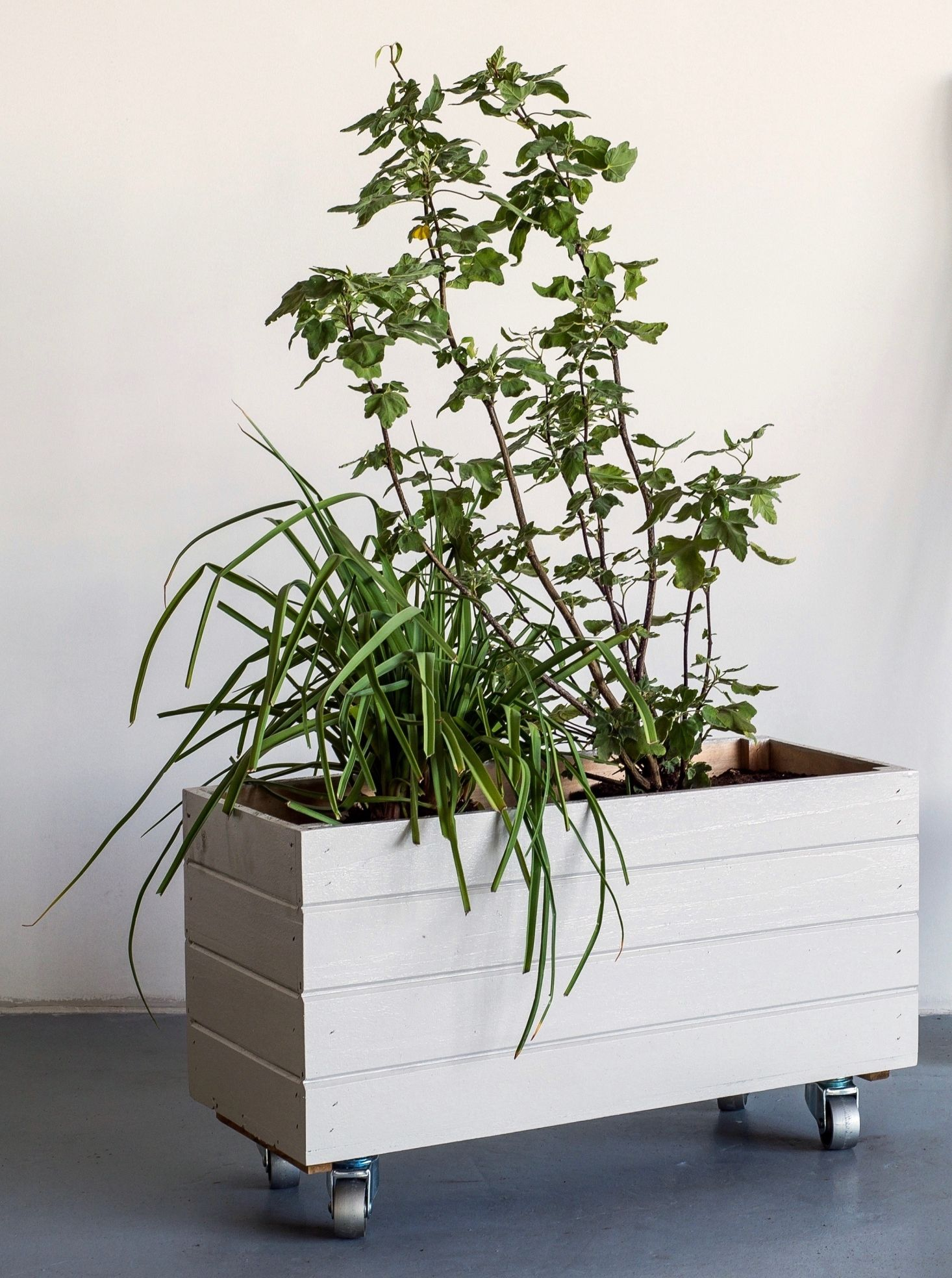 Container gardening a diy planter on wheels diy