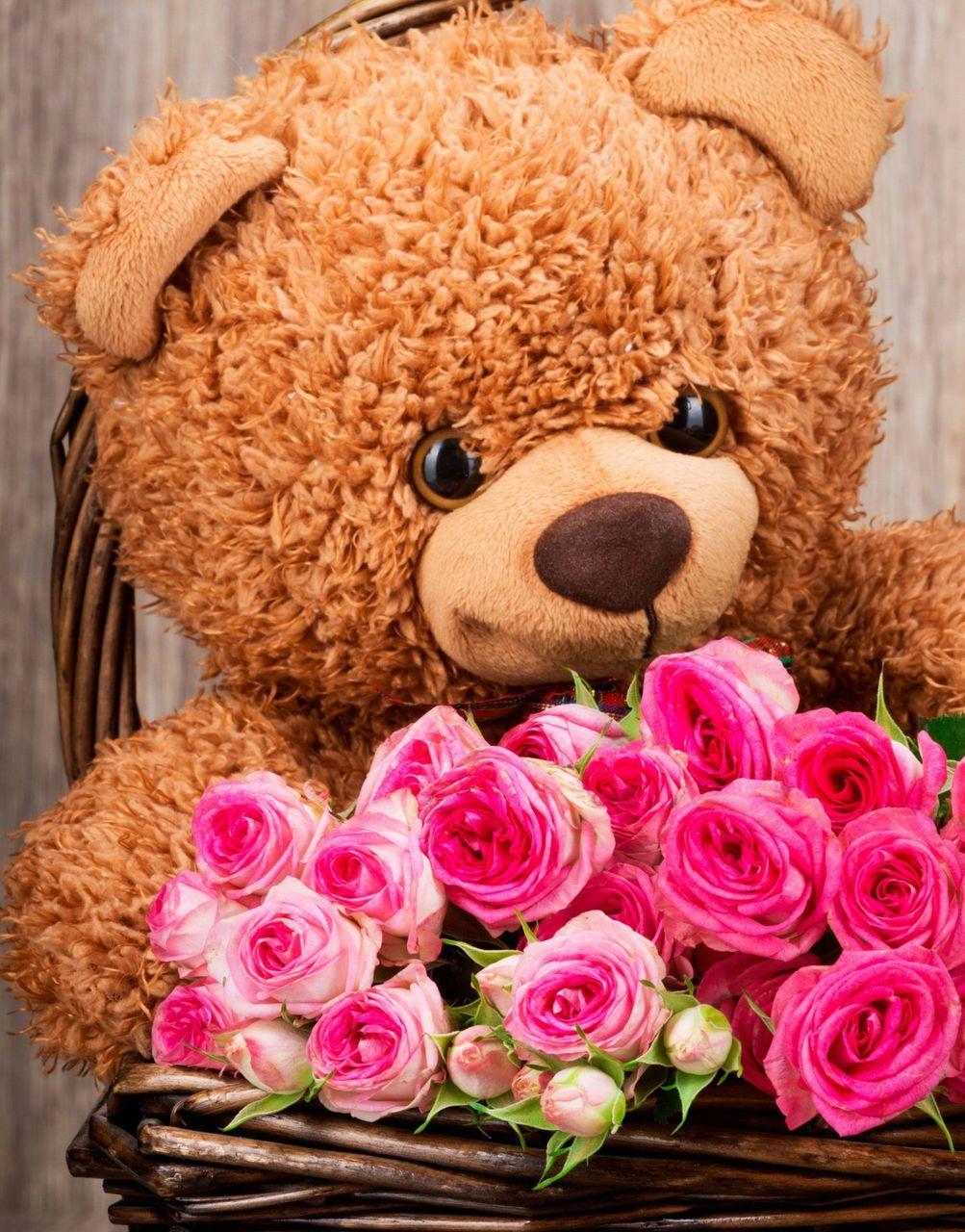 медведь цветы открытка заодно
