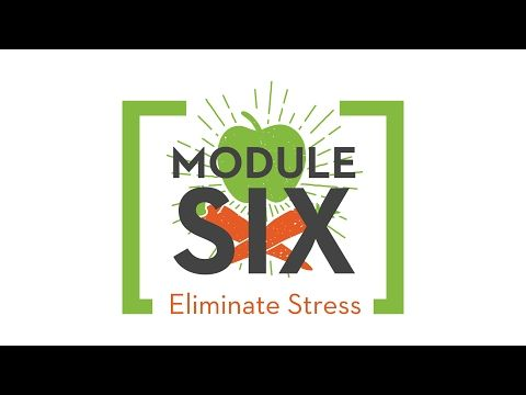 Square One Module 6 How To Eliminate Stress Amp Heal Your Heart Live Square One Chris Beat Cancer