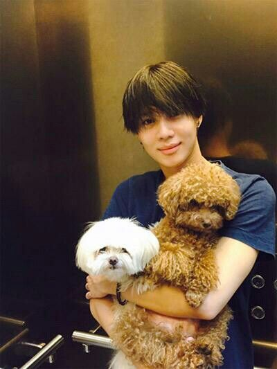 150718 Taemin With His Dogs Adam And Eve Unlu Fotograflari Unluler Kopek