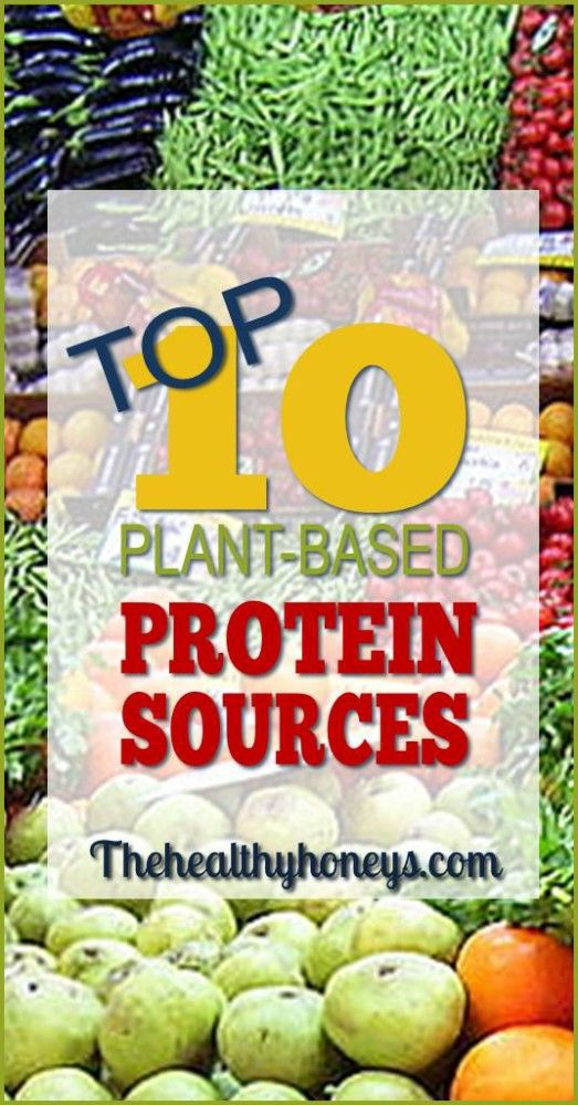 top 10 plant based protein sources the healthy honeys