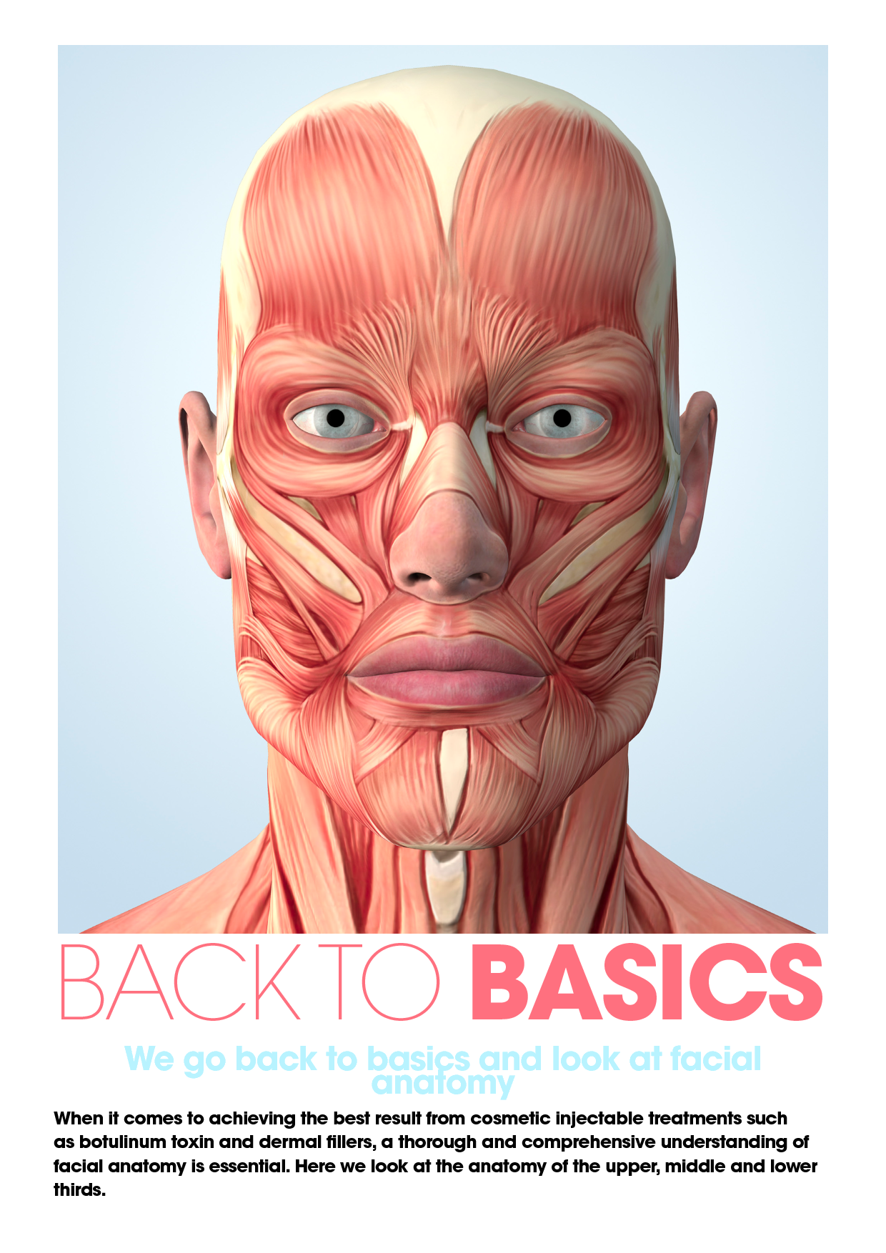 Botox Facial Muscle Diagram Dolphin Food Chain Face Anatomy Google Search Pinterest