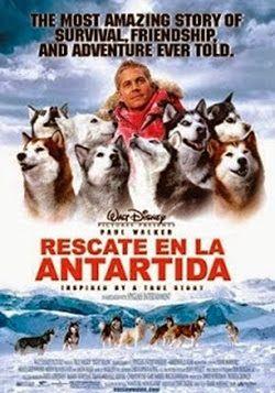 Rescate En La Antartida Online Latino 2006 Peliculas Audio Latino Online Dog Movies Winter Movies Paul Walker Movies
