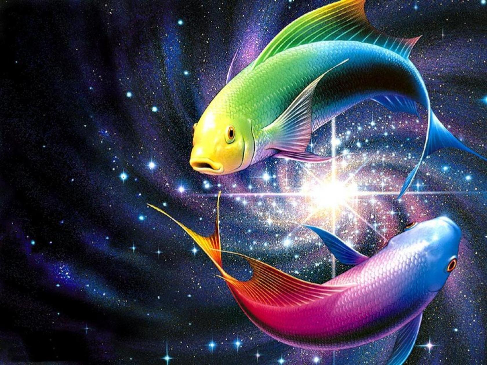 OV Free Live Fish Wallpaper Full HD Awesome Fish