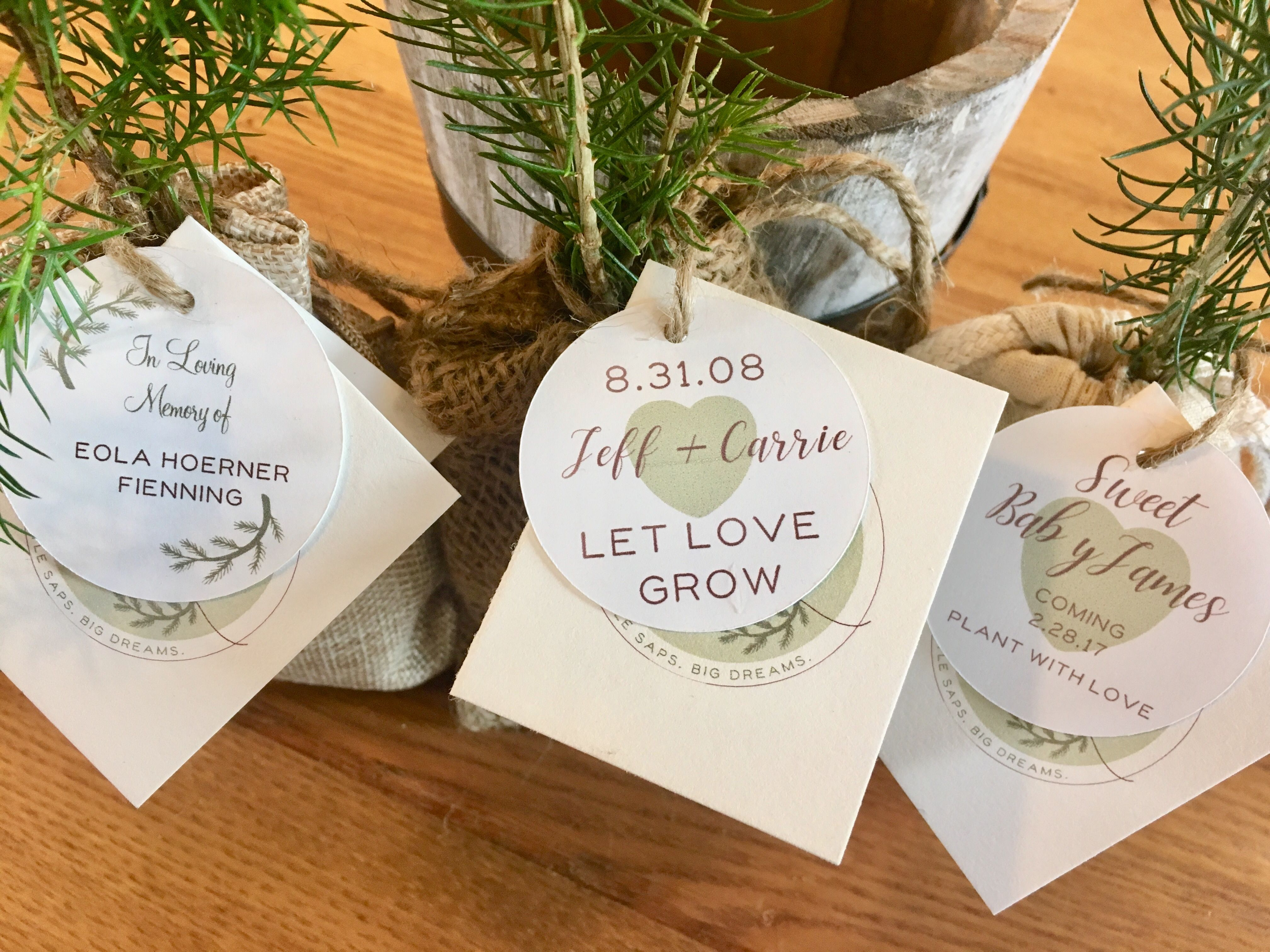 Little Saps | Celebrate your event with a customized tree seedling ...