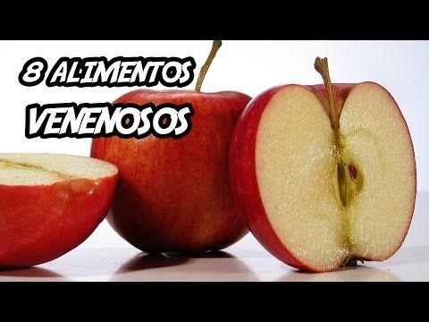 8 Alimentos Venenosos Que Voce Ama Comer Youtube Alimentos