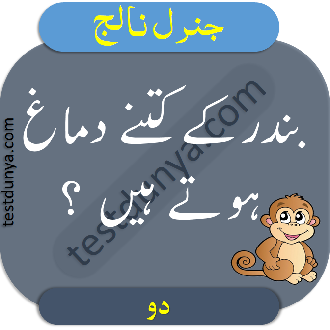 General Knowledge Questions and Answers in Urdu ...