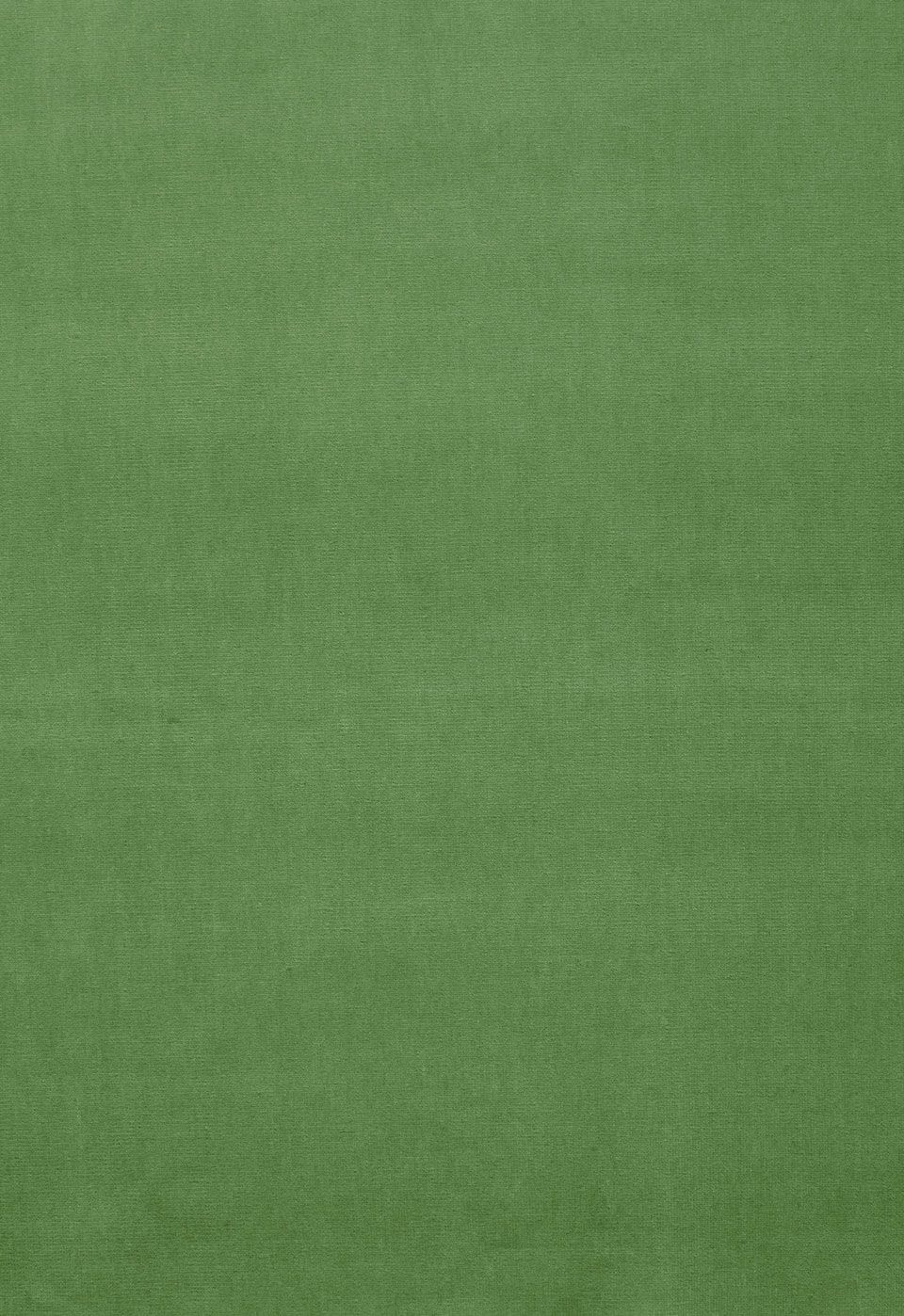 Fabric | Gainsborough Velvet in Parrot | Schumacher