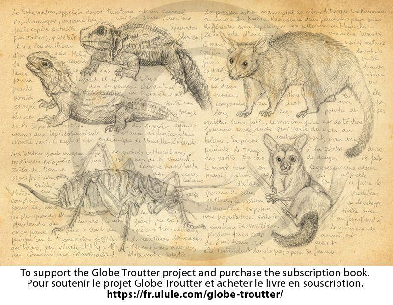 Pour Soutenir Le Projet Globe Troutter Et Acheter Le Livre En