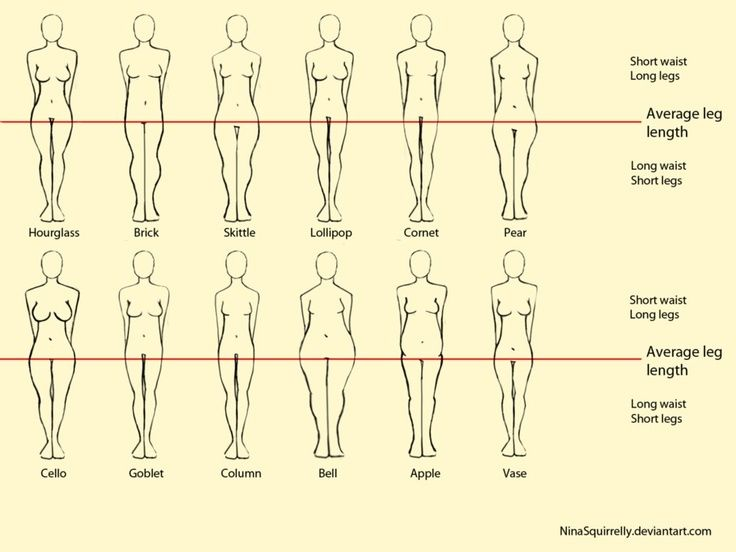 Realistic Woman Body Shape Chart By Ninasquirrelly On Deviantart