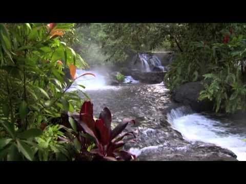 #CostaRica è #PuraVida il paradiso del #viaggiatore che ama osservare la meta del proprio #viaggio #FromLocalPerspective. Amiamo definirla la gemma del #CentroAmerica